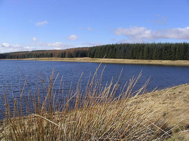 The northeast corner of Hellmoor Loch