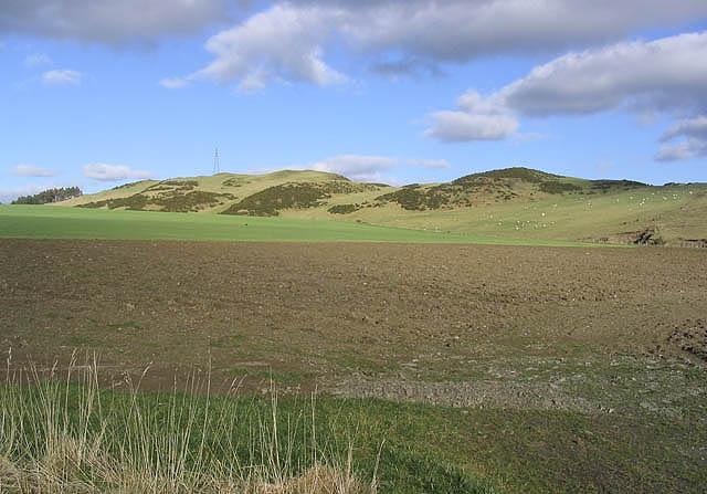 Farmland near Whitehaugh