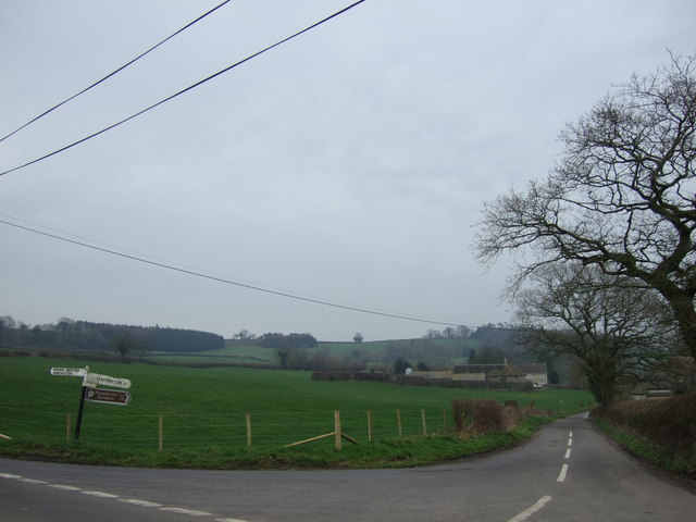 Road leading to Marsh Farm and Mapperton Manor