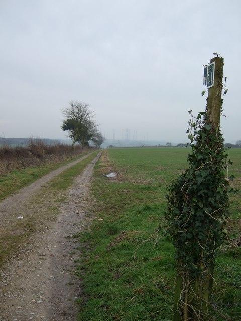 Bridleway on Toller Down