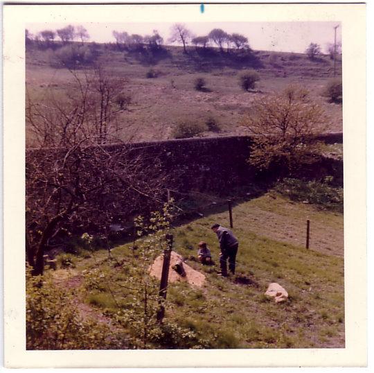 View of Sunlit Hillside