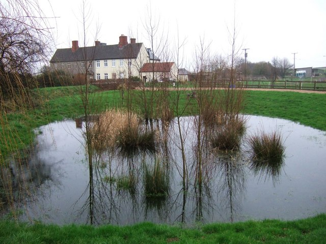 Pond at Manor House Farm