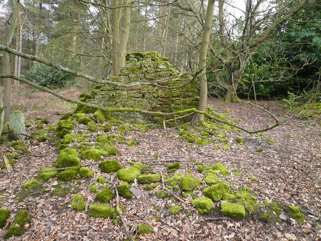 Bottom Moor - (Derelict Building with Moss)