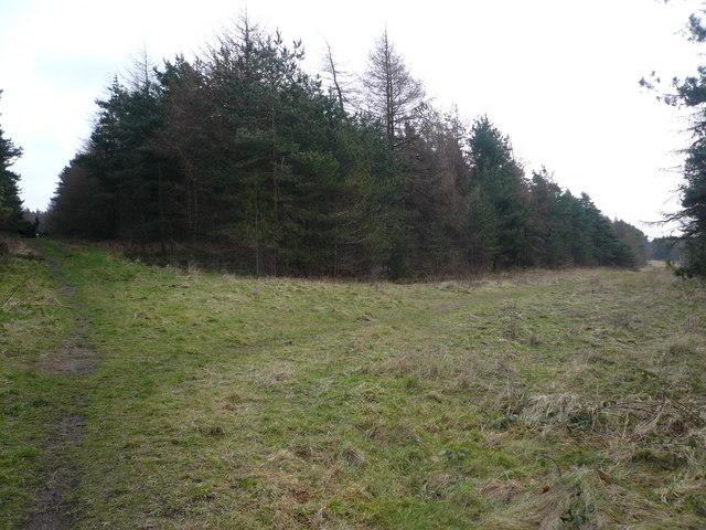 Bottom Moor - (Crossroads - Meeting of Paths)