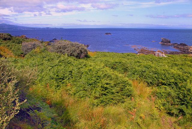 Sgeir Phlocach, Islay