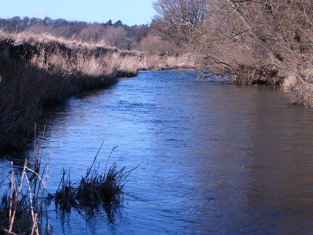 River Tyne, Phantassie
