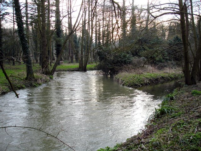 Great Stour at Chilham Mill