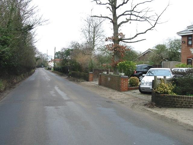 Looking NE along the road to Stodmarsh