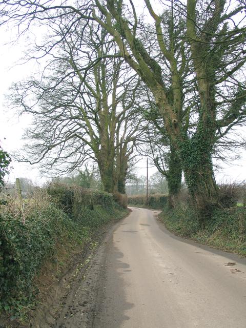Bodden Lane
