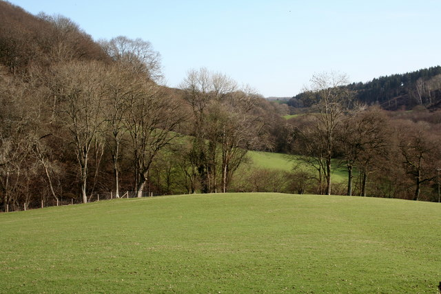 Woodland and grazing land