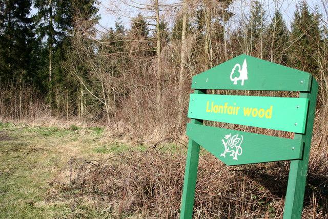 Llanfair Wood