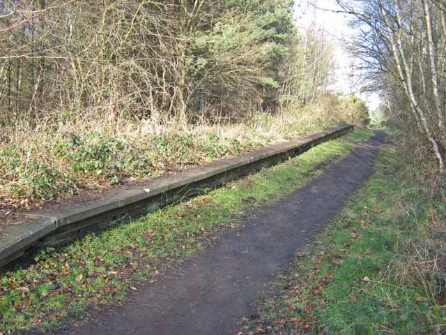 Disused station at Byers Green