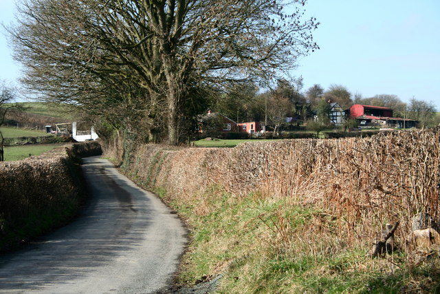 Narrow lane  and farm