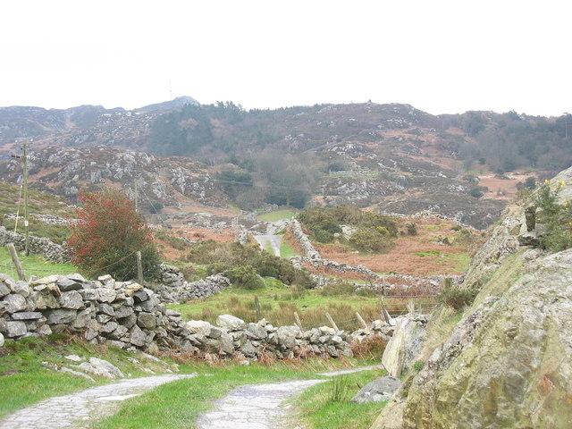 The winding lane to Rhydau Duon