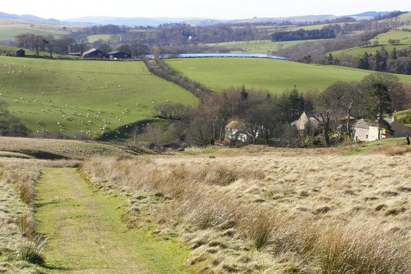 Footpath towards Longlands