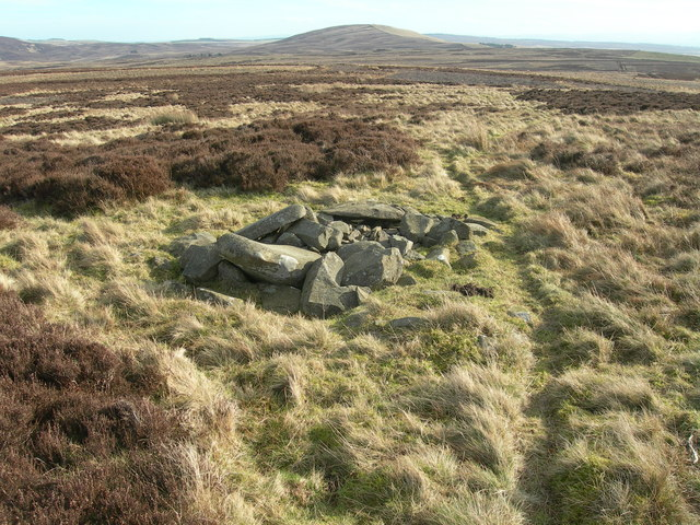 Cairn on Sting Law