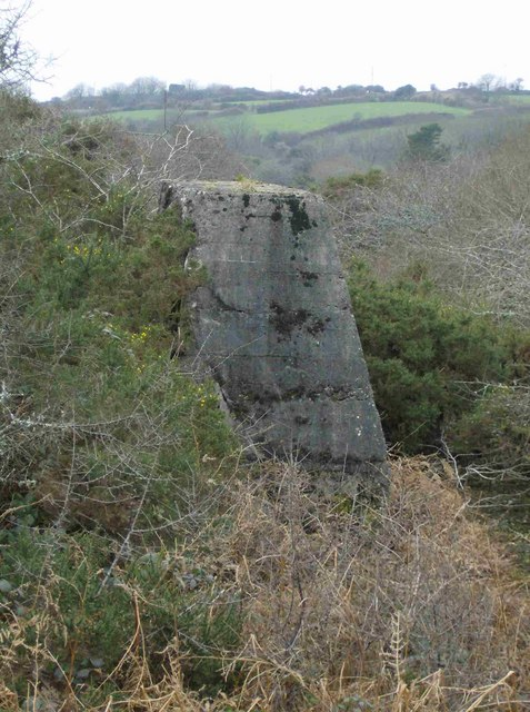 Parts of old mine workings, western Medlyn Moor, Porkellis