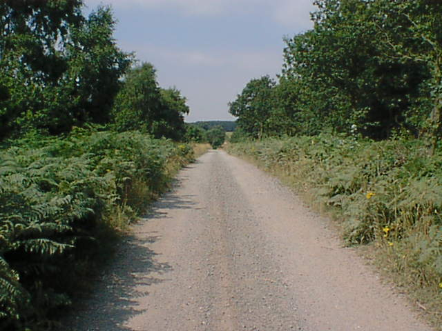 Budby Track