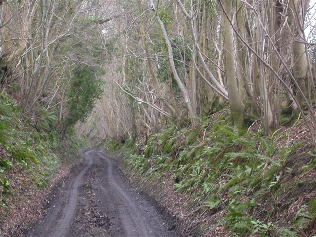 Road to Woodhouse Farm
