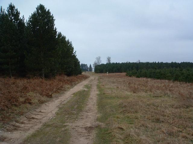 Shakers' Road