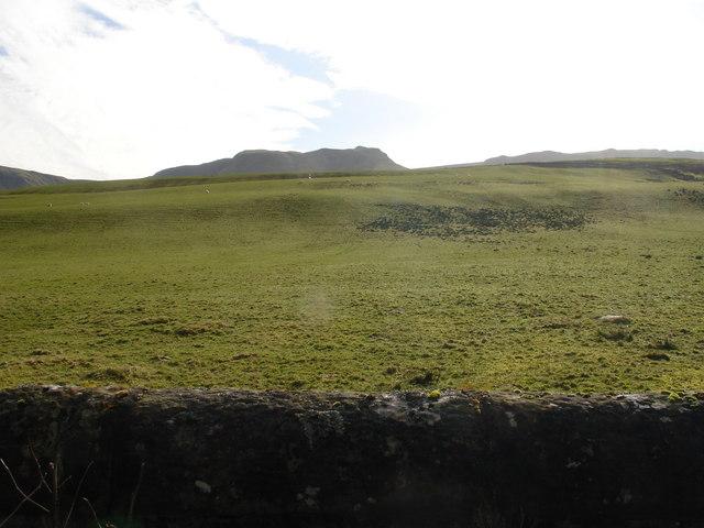 Ballikinrain Pasture