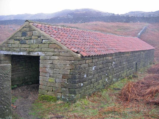 Lambing House