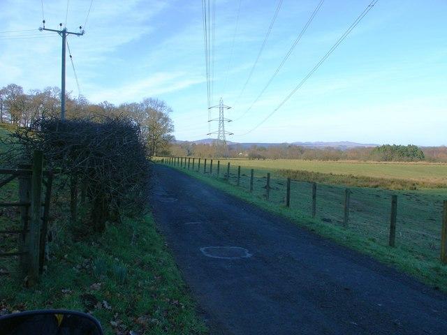 Blaneswell Pylons
