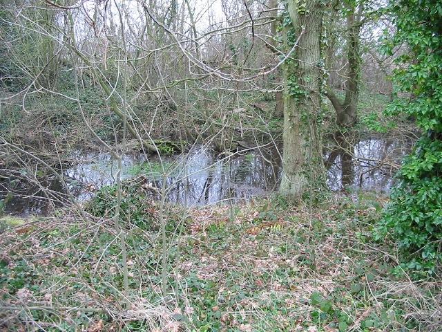 Pond in the woods, near Hode Farm