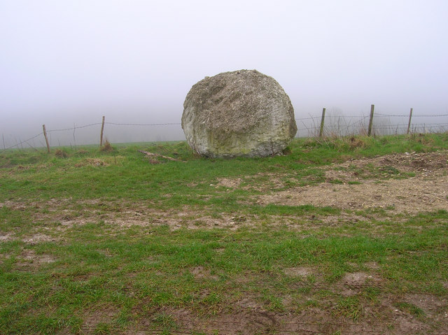 Chalk Stone, South Downs Way