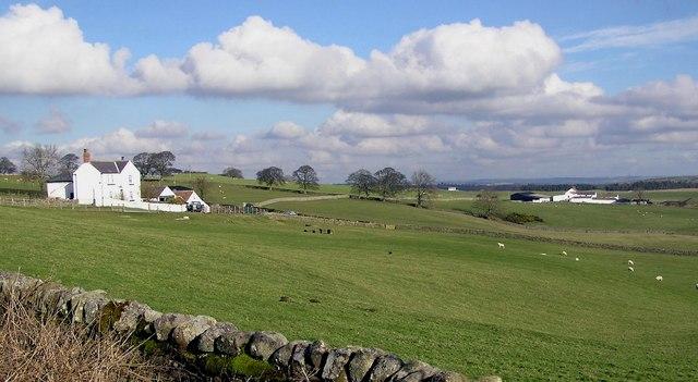 Raby Estate Farms