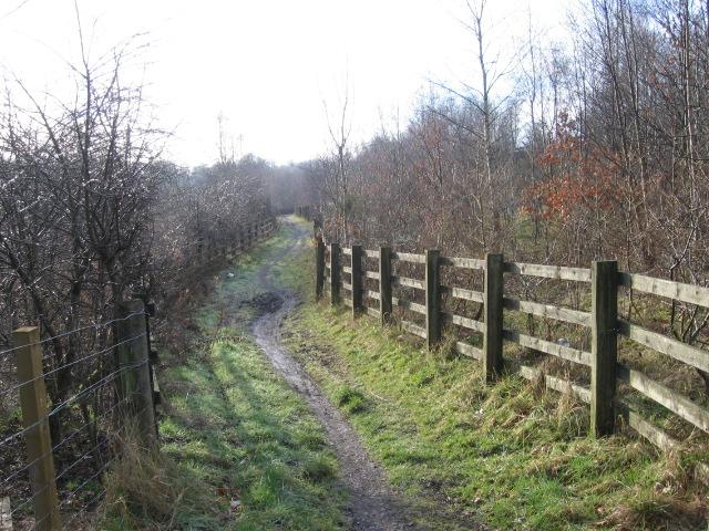 Clyde Walkway beside Raith Haugh Nature Reserve