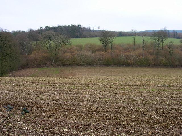 Winden Field