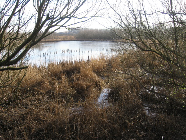 Raith Haugh Nature Reserve