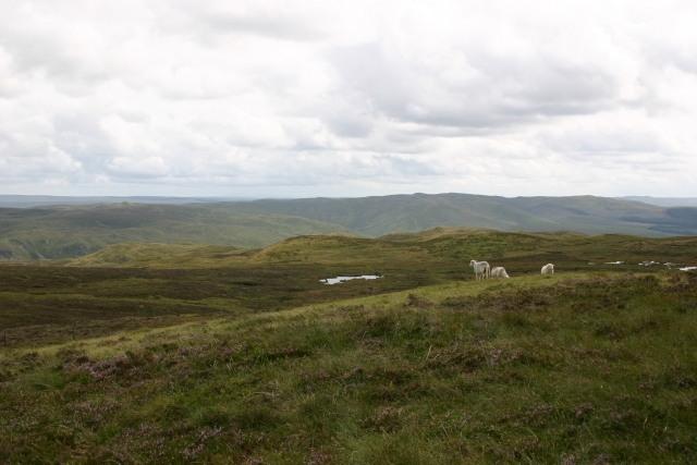 View across Bryn Garw