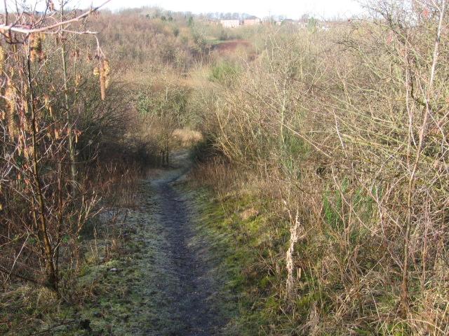 Clyde Walkway near Craighead