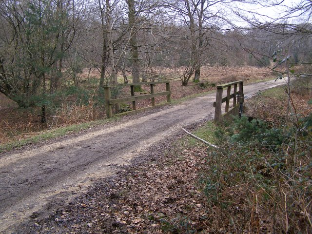 Bridge over Blackensford Brook, Burley Outer Rails Inclosure, New Forest