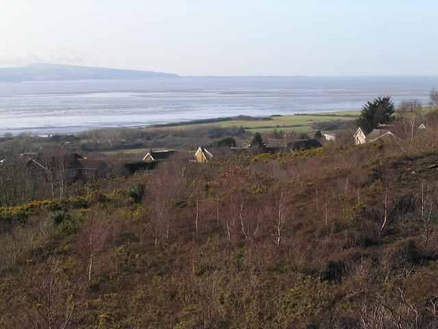 Heswall Dales