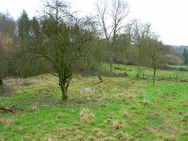 Ruins of Monkton Farm