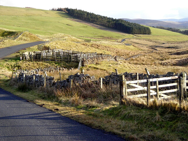 Sheepfold Near Mountherrick