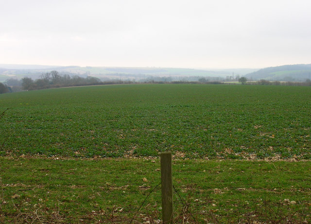 Field to the West of Monkton