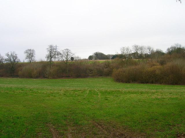 Downland near Stubbs Copse