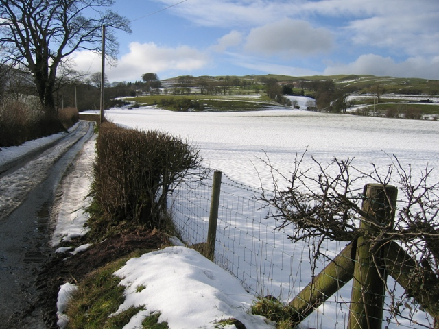 Lane and Field near Llanarmon yn Iâl