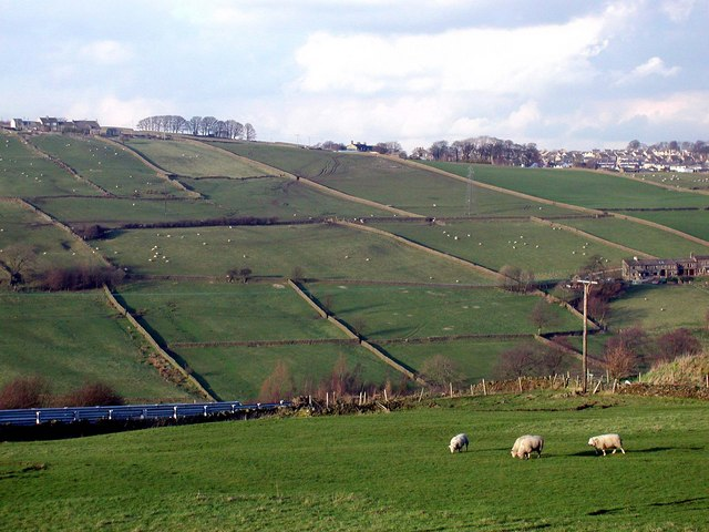 The Worth Valley