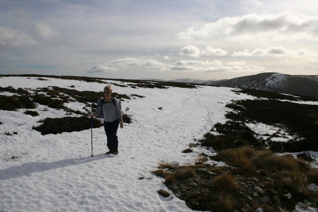 Path to Mount Keen