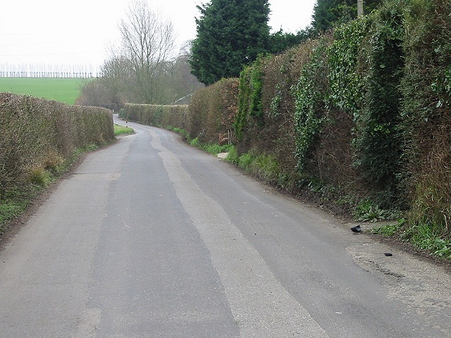 Looking S along Iffin Lane