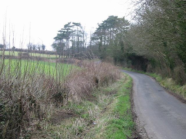 Looking N along Swarling Hill Road