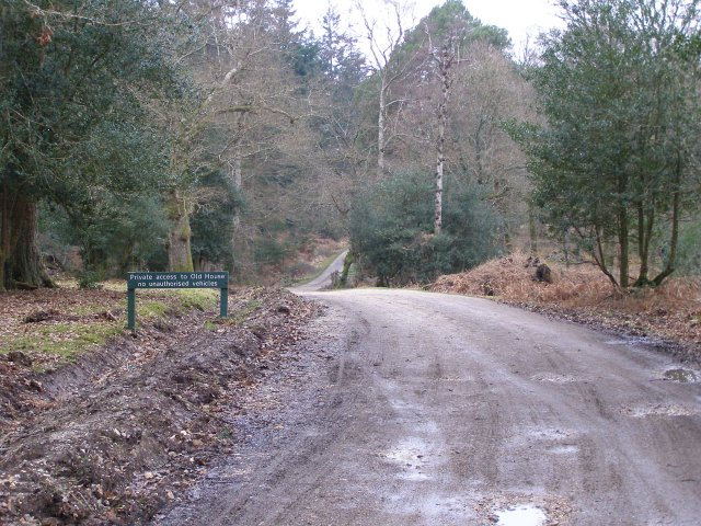 Track to Old House, South Oakley Inclosure, New Forest