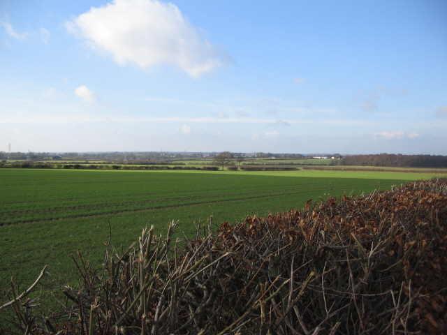 The Solway Plain