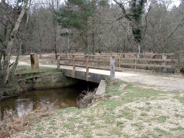 Bridge over Black Water, Dames Slough Inclosure, New Forest