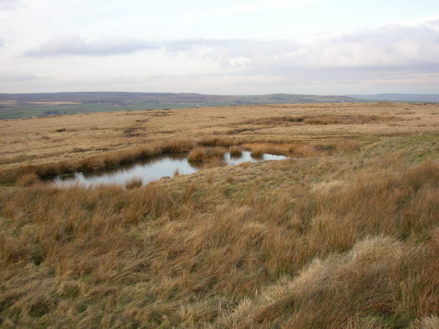 Pond, Baildon Moor